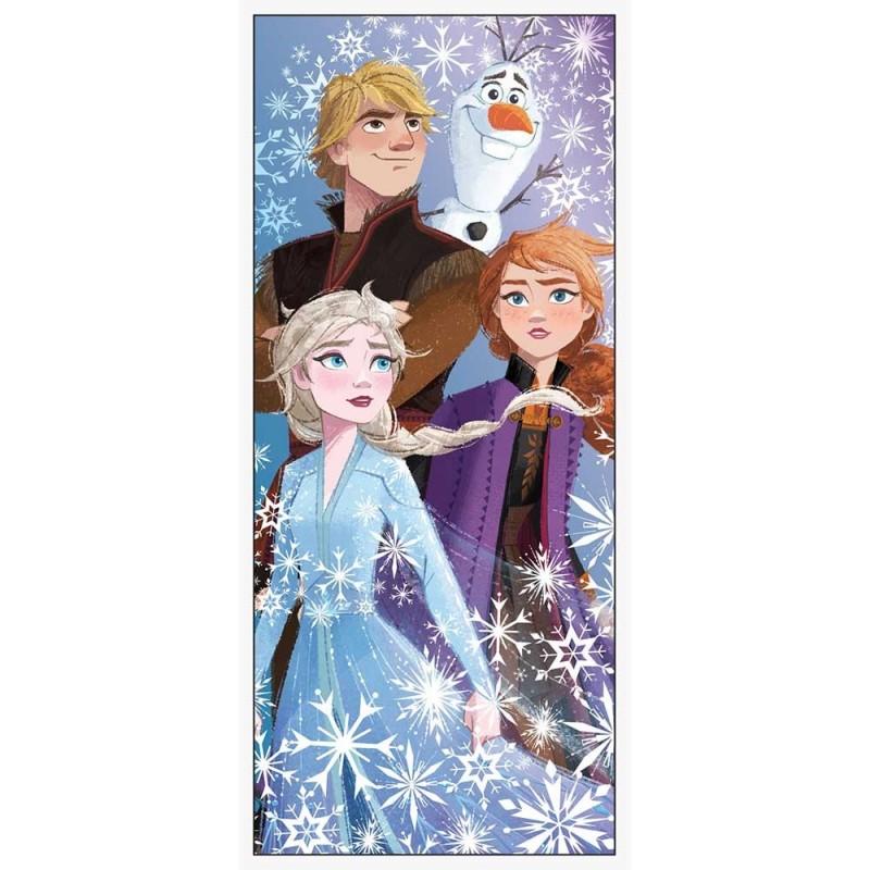 Frozen 2 Door Banner