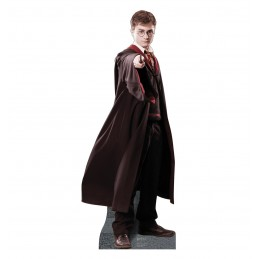 Harry Potter Stand Up Photo Prop