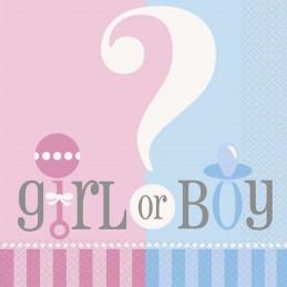 Gender Reveal Baby Shower Large Napkins (Pack of 20)